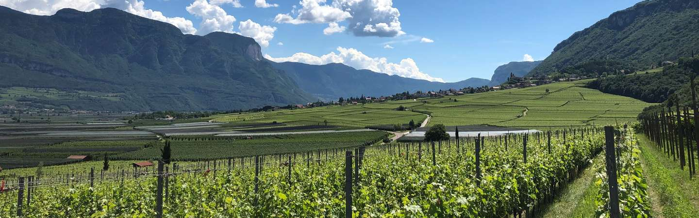 Südtirol Reiseziel Genuss